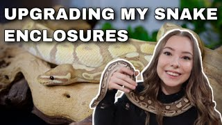 Why I'm Changing My Snake Care + Future Reptile Room Plans