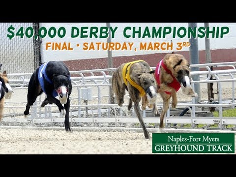 2018 Derby Championship at Naples