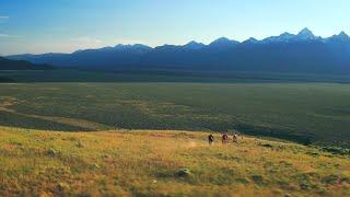 Destination Trail: Jackson Hole, WY