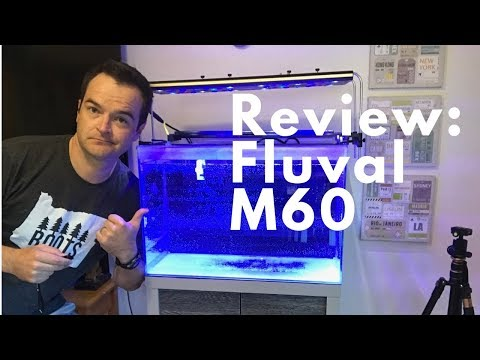 Review: Fluval M60 Saltwater Aquarium