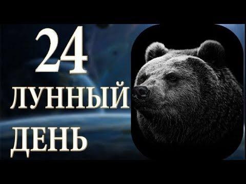 29 ЯНВАРЯ 2019г. // 24 лунные сутки, 24 лунный день. Характеристика дня