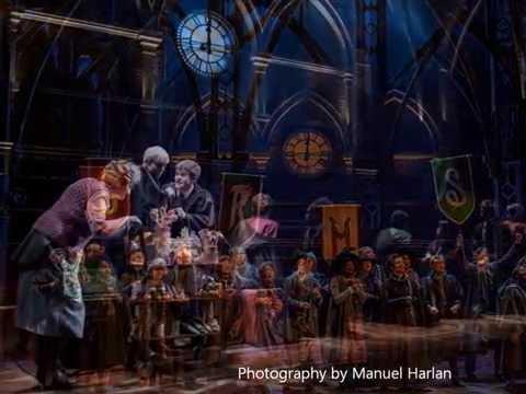 Harry Potter e la maledizione dell'erede - Il Potere Oscuro del Marchio
