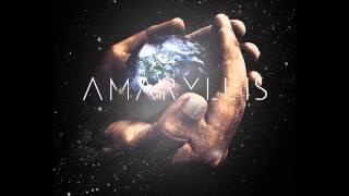 Vixen - Amaryllis
