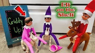 Purple & Pink Elf on the Shelf - Lost Hat on Real Horse Race! SHE'S BALD!!! Day 18
