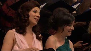 Gute Nacht mit Eiapopei! - Sommernachtstraum (Mendelssohn)