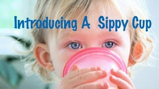 When to Introduce a Sippy Cup to Your Baby | CloudMom