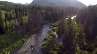 YC Fly Fishing