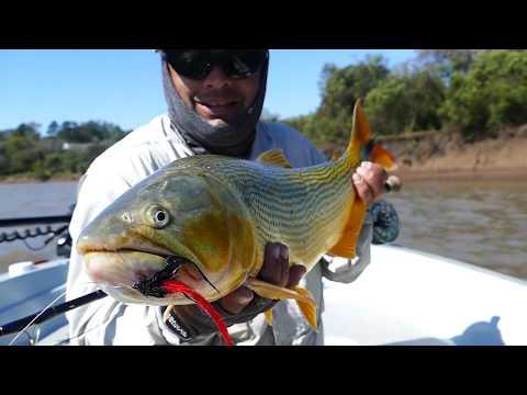 Best Dorado Fishing Lodge