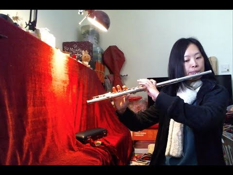Adult Flute Beginner - Flute Progress in First Year letöltés