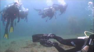 Bird Rock Dives - Catalina Island - Eco Dive Center - Island Time Boat