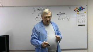 Расшлаковка организма и образование солей (А.Н. Алименко)