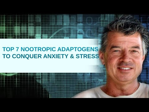 Top 7 Nootropic Adaptogens to Conquer Anxiety and Stress