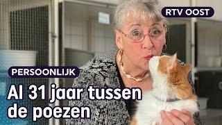 Wie neemt dit poezenhotel (met 100 katten) over van Paulette? | RTV Oost