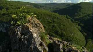 Le Tarn et Garonne au fil de vos envies