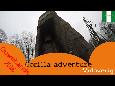 Ouwehands: Gorilla adventure