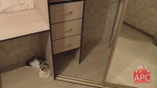 Двухстворчатый встроенный угловой шкаф-купе на заказ