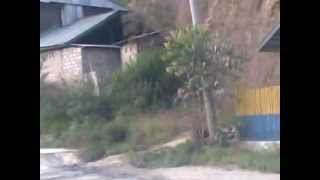 preview picture of video 'visit mamasa with AASM AHIDA 09052011.mp4'