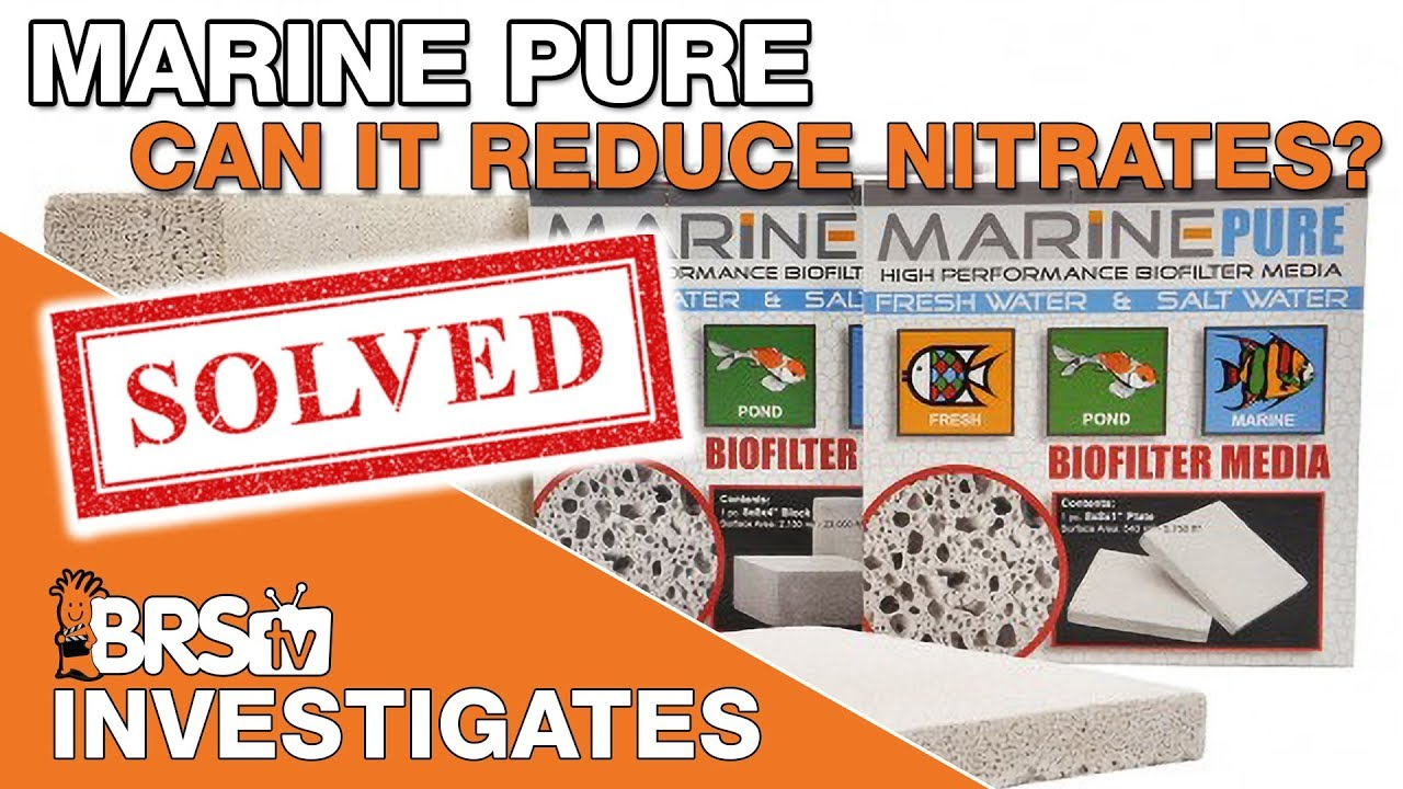 BRStv Investigates: Is a MarinePure all your reef tank needs for nutrient control?