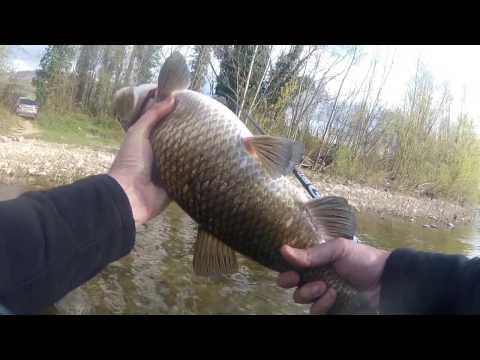 Negozi dinverno pescando in indirizzi Di Mosca