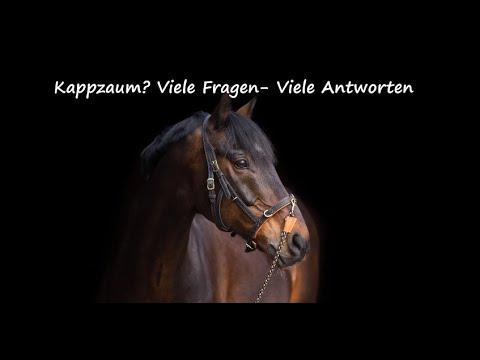 Kappzaum - Viele Fragen - Viele Antworten