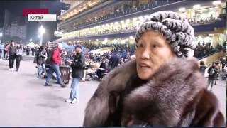 Новый 2014 год Лошади  как его встречают в Китае все по фен шуй