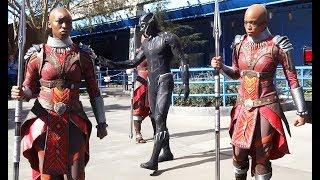 """Black Panther"" T'Challa & Dora Milaje warriors arrive at Disneyland Resort"