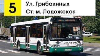 """Автобус 5 """"Ул. Грибакиных - ст. м. """"Ладожская"""""""