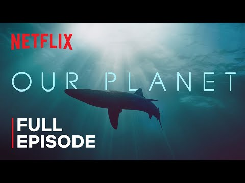 Our Planet | Coastal Seas | FULL EPISODE | Netflix