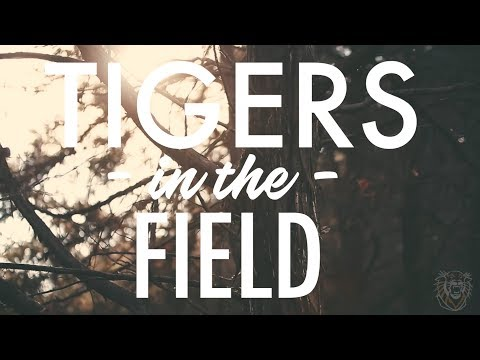 Tigers in the Field: Episode 3