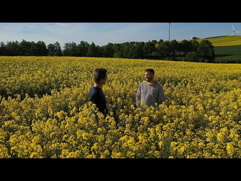 Biomasakr - film o řepce a biopalivech