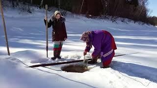 Жизнь в лесу рыбалка, женщины знают своё дело. Ч. №1/Khanty. Fishing, women know their job. Part № 1
