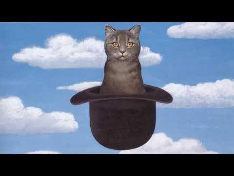 Всемирный день кошек (рассказывают Ангелина Сиротина и Денис Середа)