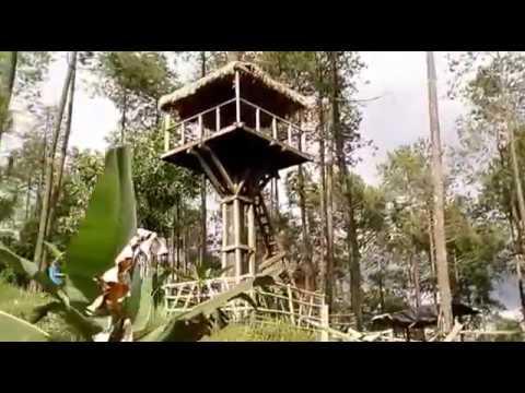 Video Hutan Wisata Wonoasri Seper, Balepanjang, Jatipurno, Kabupaten Wonogiri