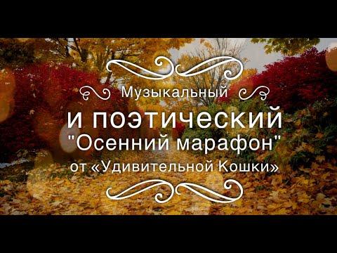 """Музыкальный и поэтический """"Осенний марафон"""" от """"Удивительной Кошки"""""""