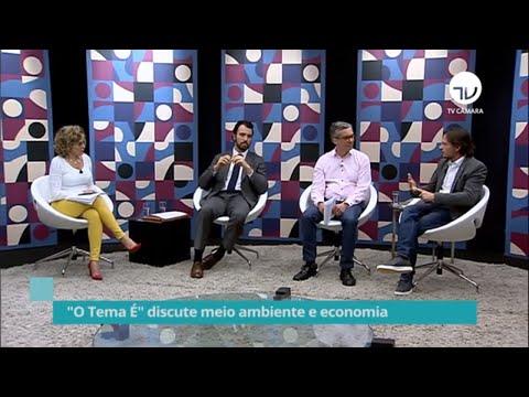 Especialistas debatem desafios da agenda ambiental e impactos para economia - 29/01/20