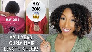 My 1 Year Curly Hair Length Check! Natural Hair Growth! | BiancaReneeToday