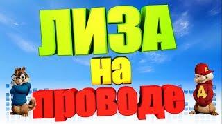 Песня про ЛИЗУ (Бурундуки)
