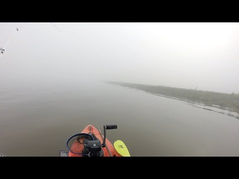 Fishing LA in the fog paid off!