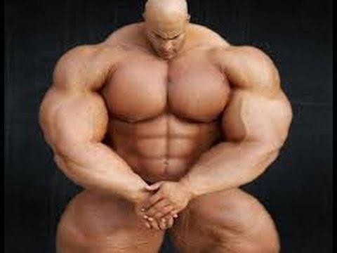 La distribution par jours des muscles