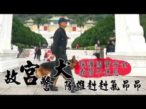 【春節出任務】故宮警犬隊雄赳赳 假走秀真嚇阻搗亂份子   台灣蘋果日報