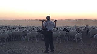 牧羊人的決定,el Pastor,電影預告中文字幕