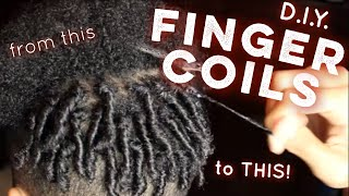 Finger Coils Tutorial (HD) | How To Twist Your Own Hair
