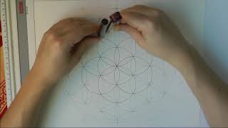 Drawing The Flower Of Life (realtime)