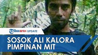 1 Keluarga di Sulawesi Tengah Dibunuh dan Rumah Warga Dibakar, Ini Sosok Ali Kalora Pimpinan MIT