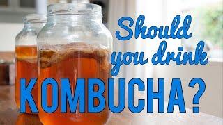 Should You Drink Kombucha?