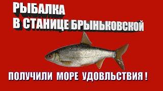 Рыбалка хутор труд в каневском районе