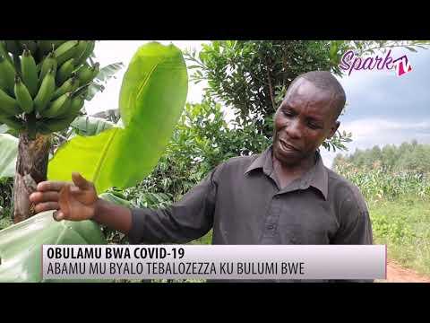 Baabano abatuuze b'e Nsangwa abatefiiriddeyo kubya COVID-19