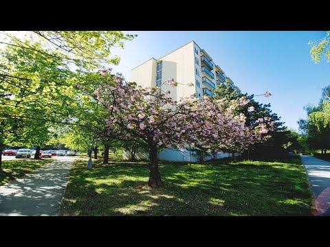 Video z << Prodej bytu 2+kk, 43 m2, Brno >>