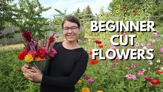 Cut Flower Garden For Beginners - From Seed To Bouquet