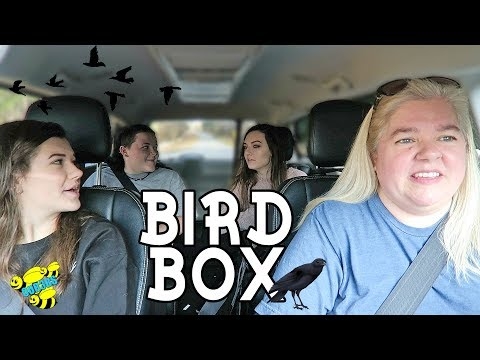 BIRD BOX MOVIE REVIEW WITH SPOILERS